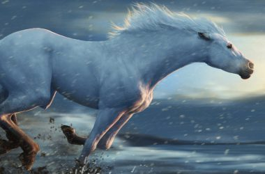 Nice Running Horse