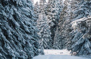 Cool Winter Wallpaper