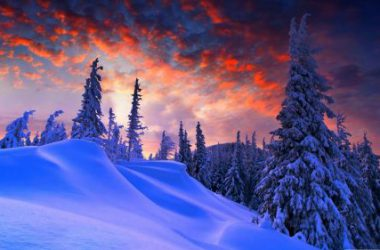 Great Winter Wallpaper