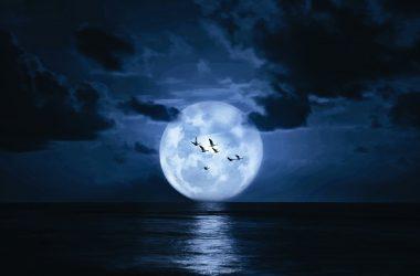 Widescreen Moon Wallpaper